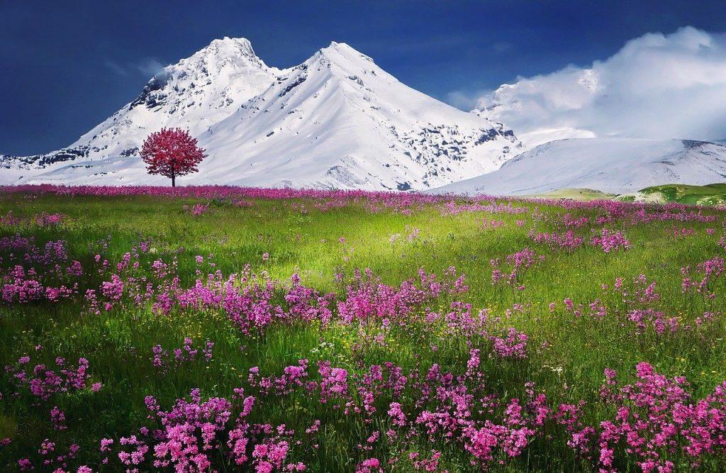 Montagne Alpi Italia